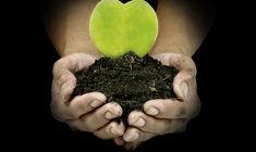 3 clefs pour vivre un amour durable